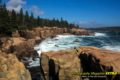 Thunder Hole, Acadia National Park, Maine