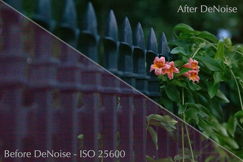 TOPAZ denoise review remove noise from images