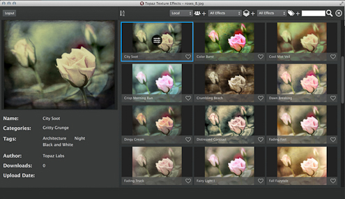 digital image editing software images of roses