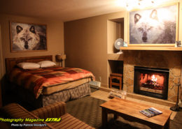Banff Rocky Mountain Resort - The Best Hotels.