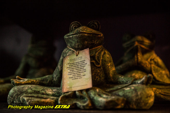 OL frog on a shelf statue of stone with a spirit script on his chest