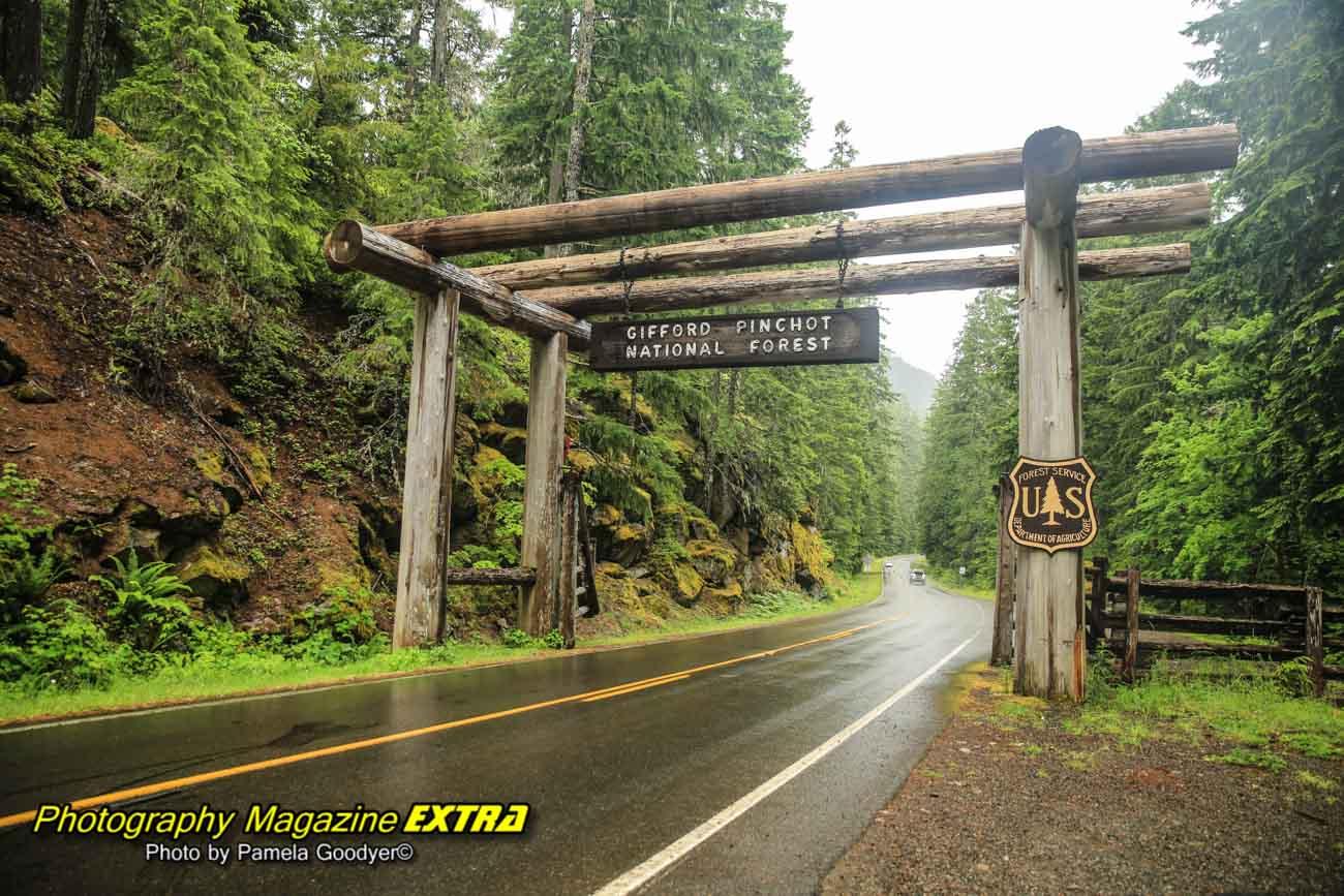 Mount Rainier National Park Photography